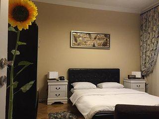 Deluxe Cișmigiu Park Apartment