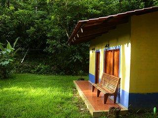 Cabana en selva y nacimiento de rio. Zona indigena.