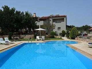 Elianthos Villa ''Villa Basil''
