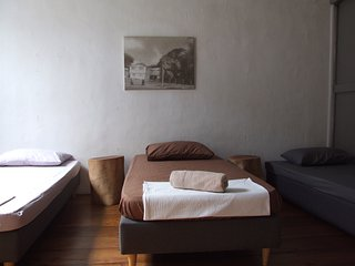Carbon Residency Triple Single Room 室內空氣花園三旅人私人房