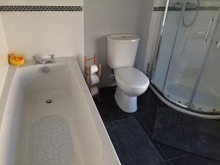 Amplio baño familiar, con una amplia ducha independiente y un baño.