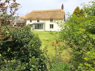 Luxury Dartmoor cottage with 4 acres of grounds