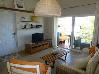 Beautiful Ocean One 1BR/1BA Mini Penthouse