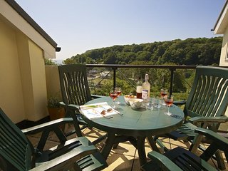 THE HIDEAWAY, dog-friendly, central Dartmouth, furnished terrace, parking permit