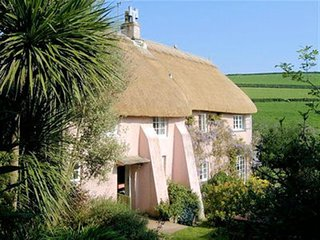 LITTLE HORSECOMBE, thatched cottage, garden/terrace, rural countryside location,