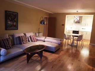 MODERN 2BR-2BA APT-JUST OFF GRAND CANAL DOCK!!