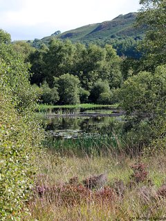 ... the largest bog in Europe, there are walks, lakes and a hide to sit and watch the wildlife