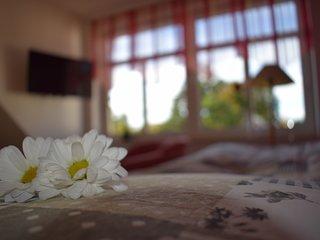 Gastehaus Burgblick , Ferienwohnung, Monteurzimmer, Appartement
