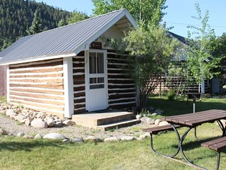 Rustic and Cute Studio Cabin at Three Rivers Resort in Almont (#8)