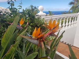 Villa Larnia Familien-Apartment ..............Urlaub fur Korper, Geist und Seele