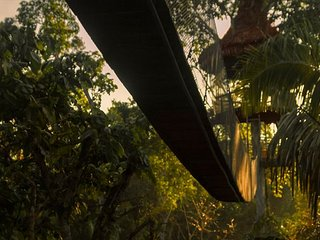 Treehouse 3 Rio Vista - 40ft sleeps 3 (1 king or 2 twins w/cot)