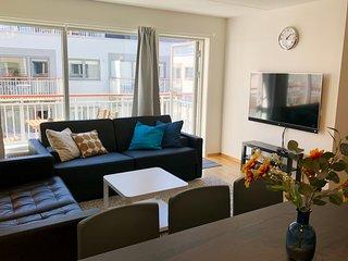 Sonderland Apartments - Mandalls gate 12-6 (Sleeps 9 - 3 BR)