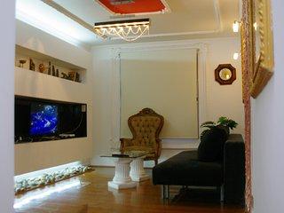 Luxurious Downtown Apartament