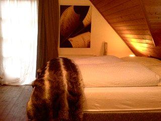 Haus Styra - Ihr Urlaub in der Dachstein Tauern Region Schladming. Apartment B