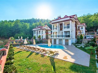 Olympia - SoloVilla For big groups, Walking distance to Hisarönü