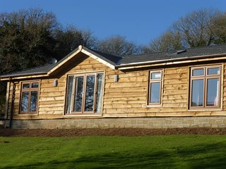 Stunning Timber Lodge overlooking the River Fowey & Glynn Valley