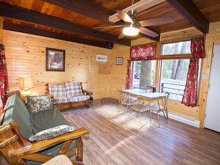 NEW LISTING! Authentic mountain cabin w/outdoor firepit & lovely views - dogs OK