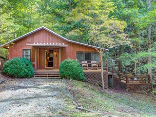 NEW LISTING! Dog-friendly secluded cabin w/hot tub, fireplace & outdoor firepit