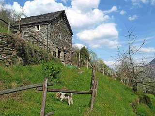 1 bedroom Villa in Domodossola, Piedmont, Italy : ref 5440852