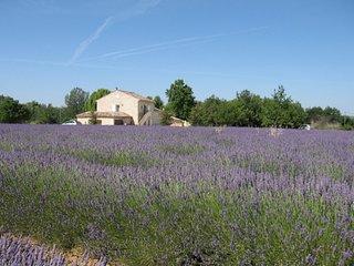 JDV Holidays - Gite St Denis, Luberon, Provence