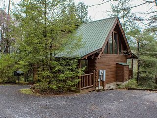 Cuddly Bear's Den - Mtn. Views, 2BR/2BA Sleeps 6, Jacuzzi