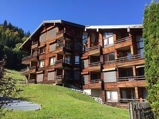 Apartment Luge