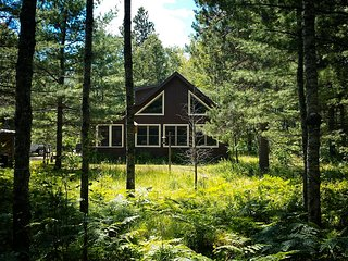 Quiet, Secluded Cabin Getaway in the Middle of the Huron Forest