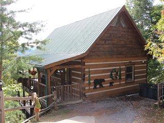 Log cabin with beautiful mountain views !