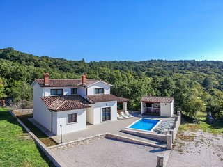 4 bedroom Villa in Vicani, Istarska Županija, Croatia - 5558536