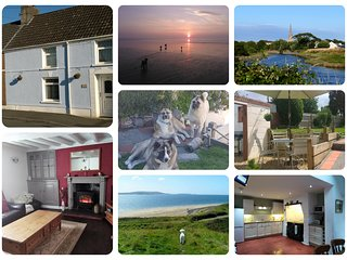Hafan Bach, dog friendly cottage - Kidwelly