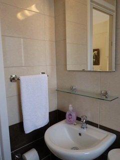 Downstairs bathroom/toilet.