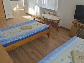 Comfortable Apartment with balcony in Gdańsk Oliwa