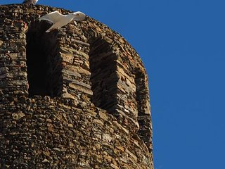 Muin a Ventu Historical Tower