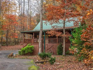 Cozy log cabin w/private hot tub, shared seasonal pool, and jetted tub