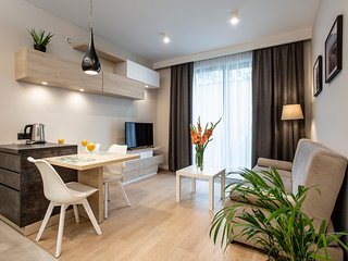 One Bedroom Apartment by Wawel Castle