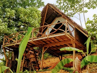 Jungle Bar Cottages