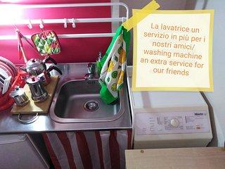 Lavello e lavatrice