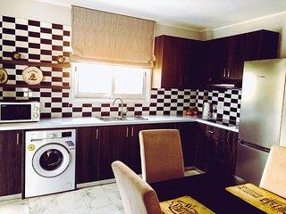 Apartment Milto, 2 bedroom furnished apartment near Finnikoudes