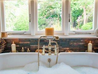 QUANTOCK HIDE, 2 bedrooms, Hot tub, Dog-friendly, Bridgwater