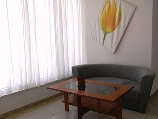 Spacious apartment in the center of Pirovac with Parking, Internet, Air conditio