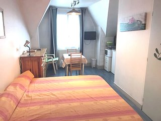 Cosy studio in the center of Aix-les-Bains with Lift, Parking, Internet
