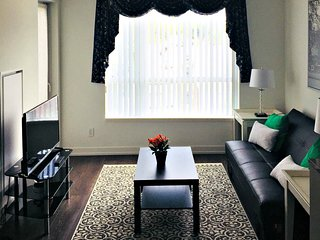 Spacious apartment in Toronto with Internet, Washing machine, Air conditioning,