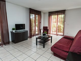 Spacious apartment in the center of Marcy-l'Etoile with Parking, Internet, Pool,