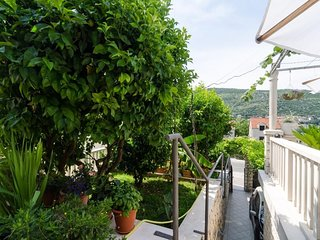 Spacious apartment in Mokosica with Parking, Internet, Air conditioning, Terrace