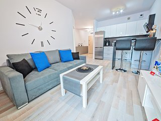 Cozy apartment very close to the centre of Poznan with Lift, Parking, Internet,