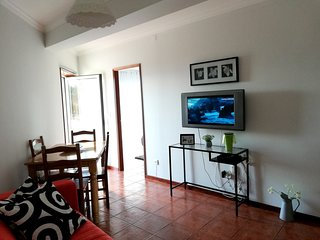 Cozy apartment in Santa Leocádia with Parking, Internet, Washing machine, Terrac