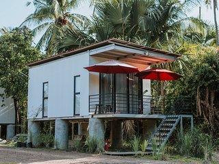 Tip of Borneo Wetland Superior Studio