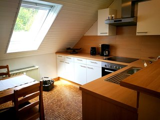 Spacious apartment in Trierweiler with Parking, Internet, Washing machine, Balco