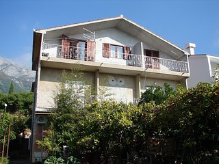 Cozy apartment in the center of Gradac with Parking, Internet, Air conditioning,