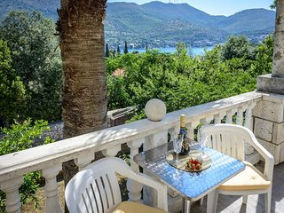 Spacious villa in the center of Zaton with Parking, Internet, Washing machine, A